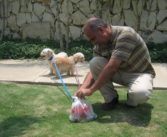 recoger los desechos de tu mascota